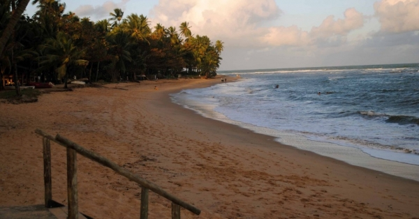 Praia do Forte: Resorts sofisticados e praias tranquilas